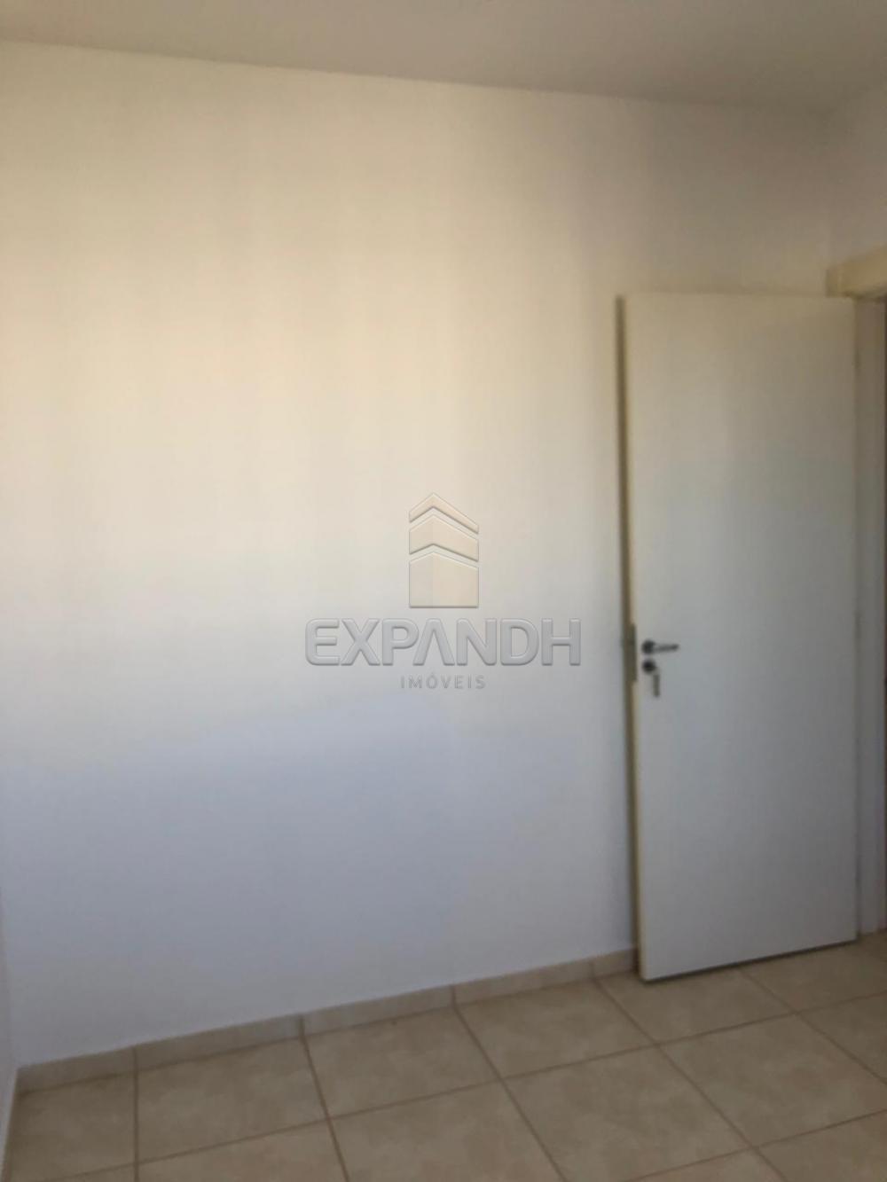 Alugar Apartamentos / Padrão em Sertãozinho apenas R$ 600,00 - Foto 47