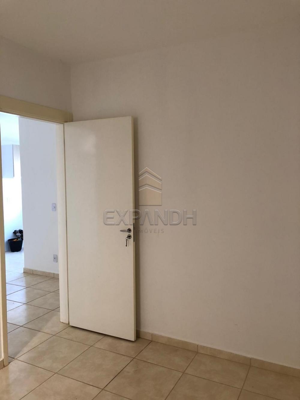 Alugar Apartamentos / Padrão em Sertãozinho apenas R$ 600,00 - Foto 51