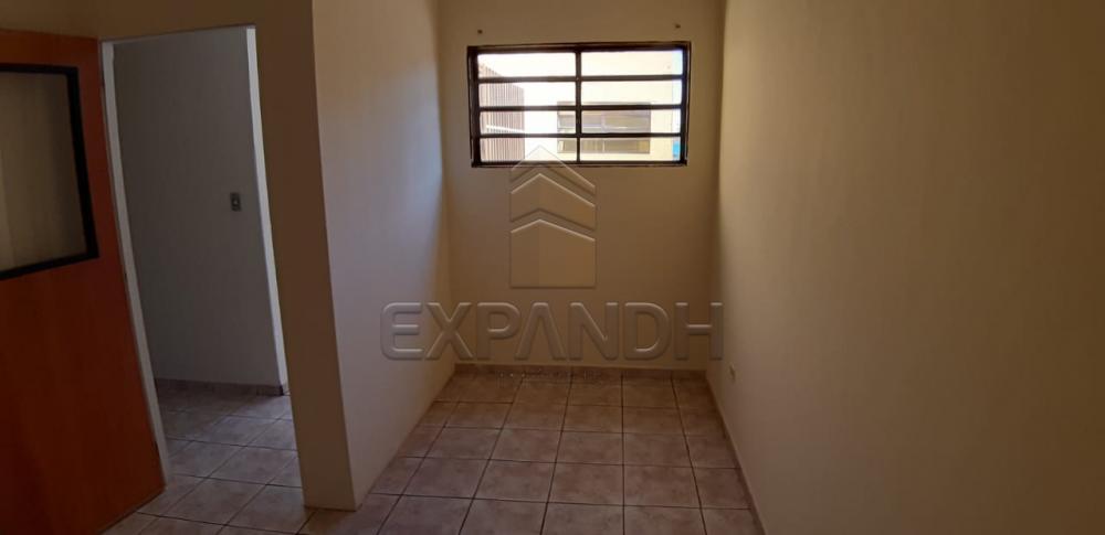 Alugar Comerciais / Salão em Sertãozinho apenas R$ 1.800,00 - Foto 7
