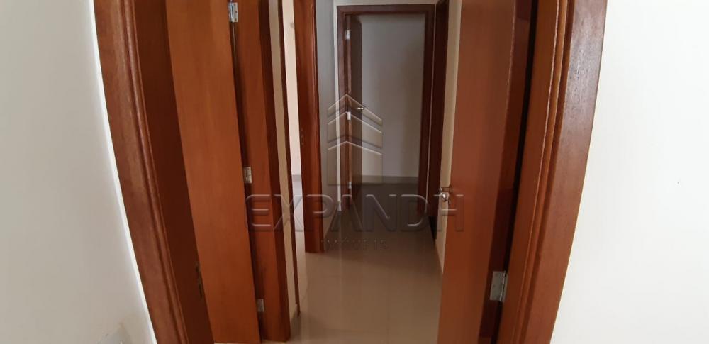 Alugar Casas / Padrão em Sertãozinho R$ 1.600,00 - Foto 21