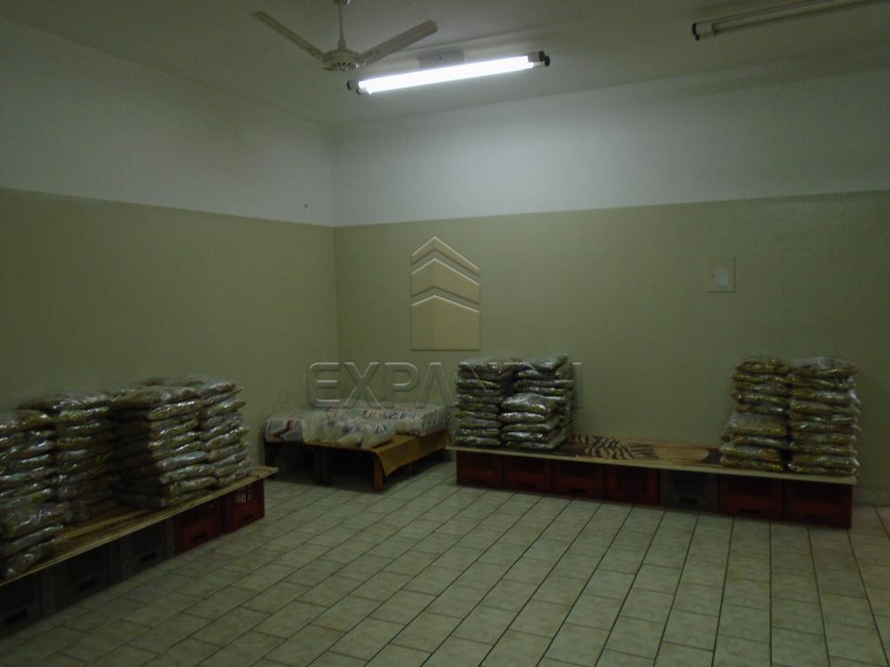 Comprar Comerciais / Salão em Sertãozinho R$ 500.000,00 - Foto 8