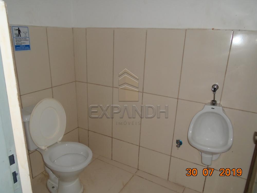 Alugar Comerciais / Salão em Sertãozinho R$ 2.100,00 - Foto 9