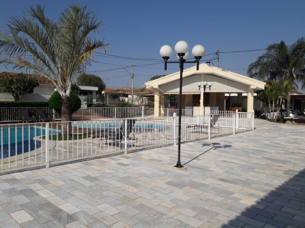 Comprar Casas / Condomínio em Sertãozinho apenas R$ 520.000,00 - Foto 6