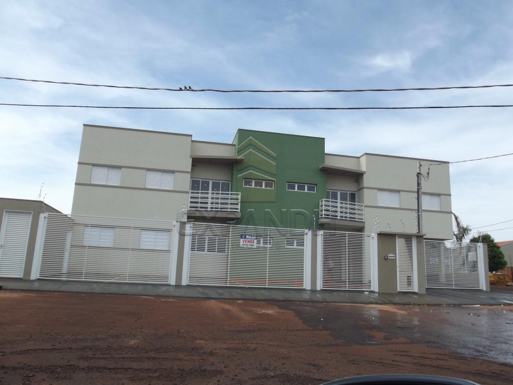 Alugar Apartamentos / Padrão em Sertãozinho apenas R$ 990,00 - Foto 1