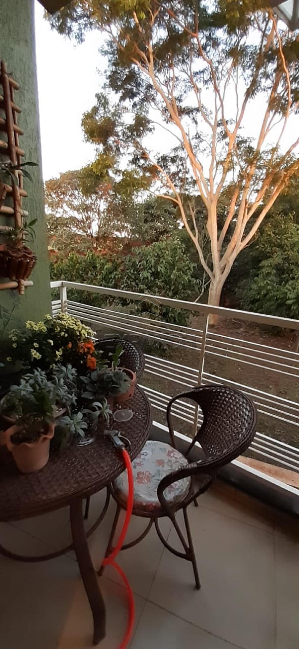 Alugar Apartamentos / Padrão em Sertãozinho apenas R$ 990,00 - Foto 3