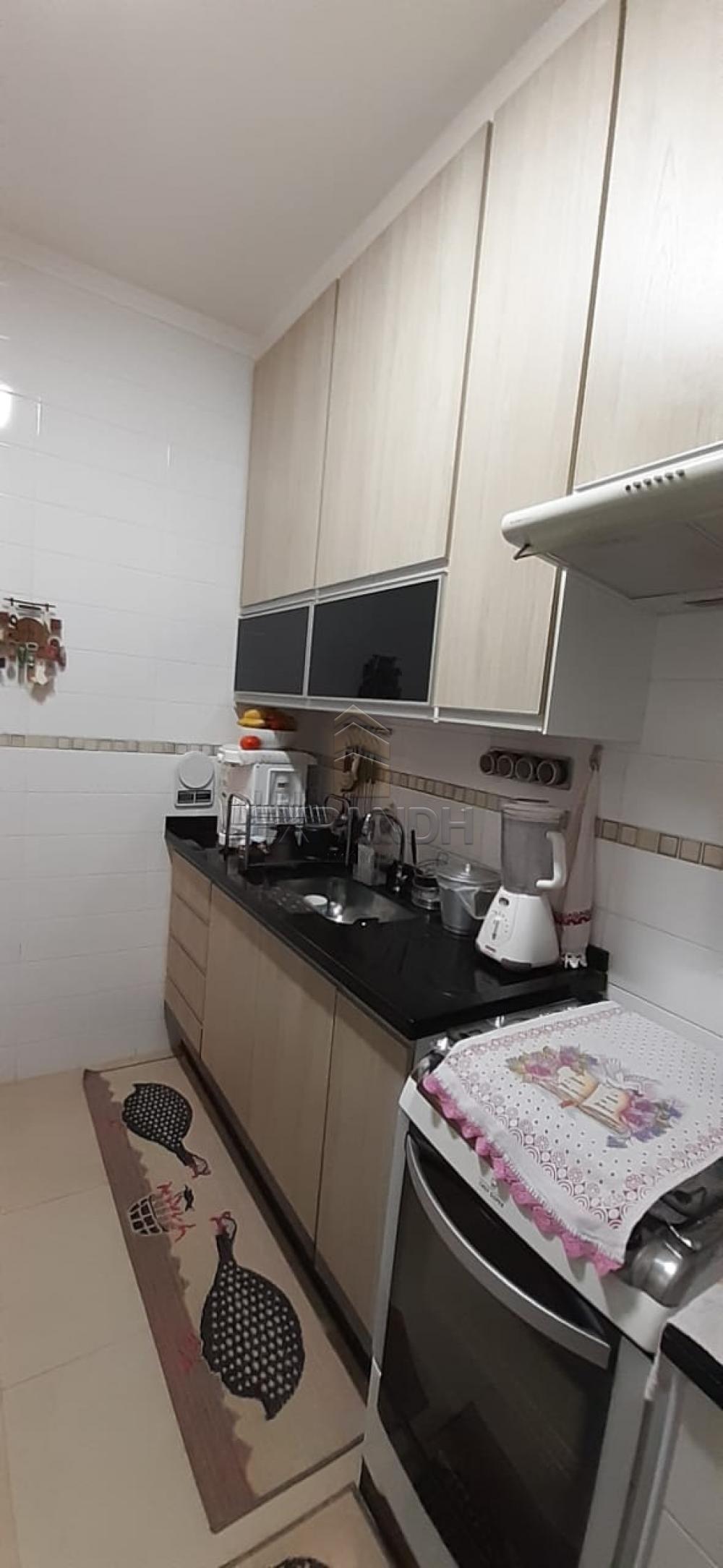Alugar Apartamentos / Padrão em Sertãozinho apenas R$ 990,00 - Foto 5
