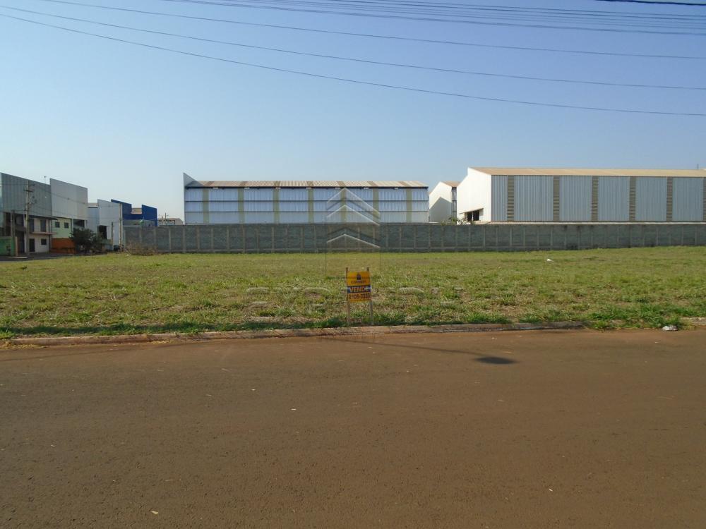 Comprar Terrenos / Padrão em Sertãozinho apenas R$ 300.000,00 - Foto 1