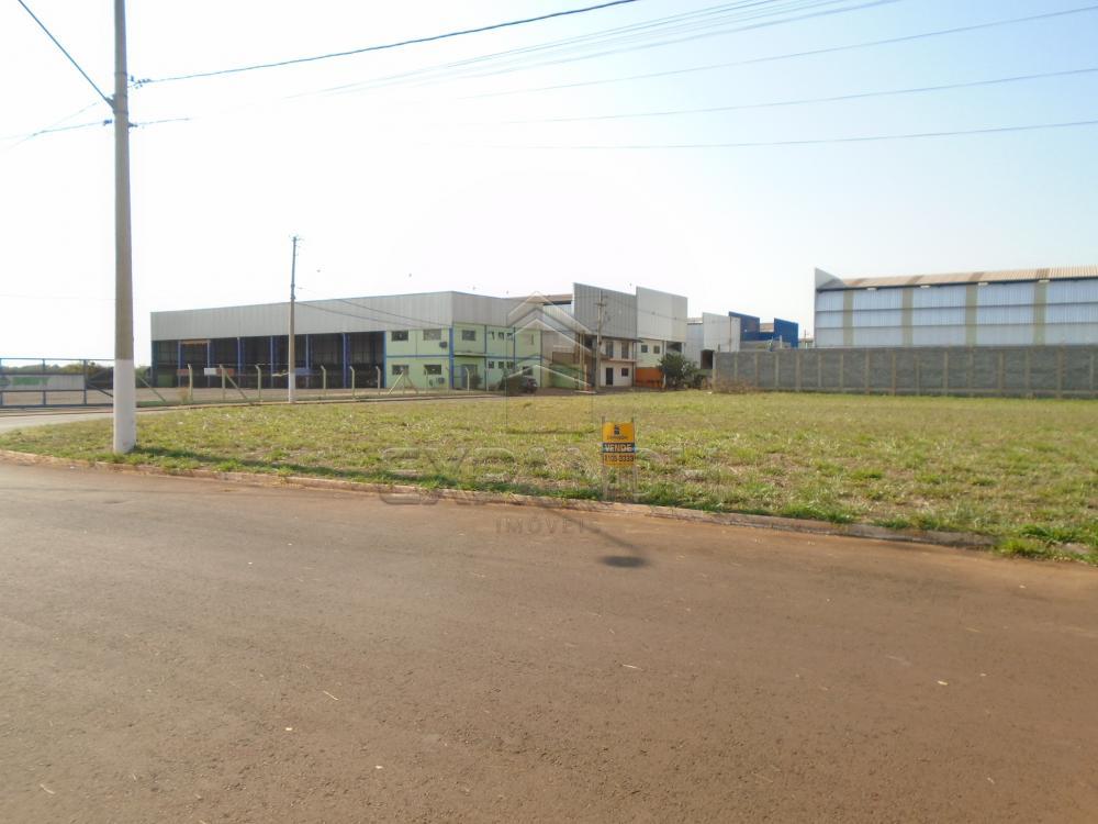 Comprar Terrenos / Padrão em Sertãozinho apenas R$ 300.000,00 - Foto 2