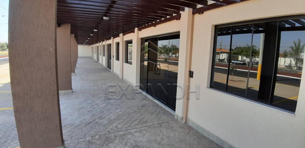 Alugar Comerciais / Sala em Sertãozinho apenas R$ 2.500,00 - Foto 8