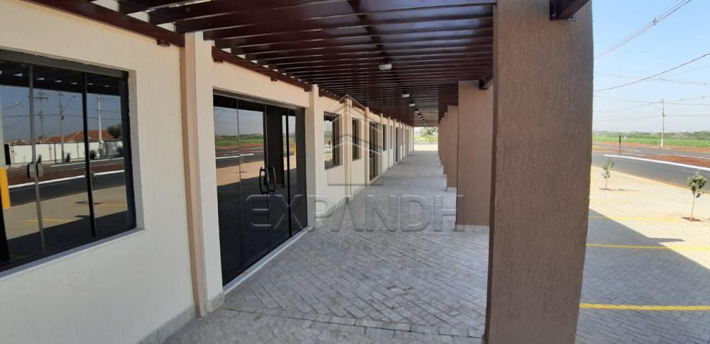 Alugar Comerciais / Sala em Sertãozinho apenas R$ 2.500,00 - Foto 10