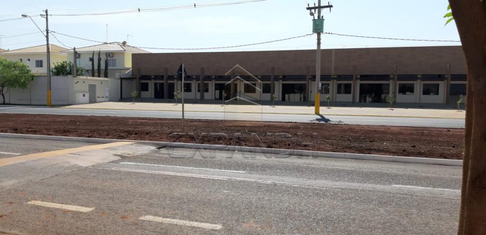 Alugar Comerciais / Sala em Sertãozinho apenas R$ 2.500,00 - Foto 6