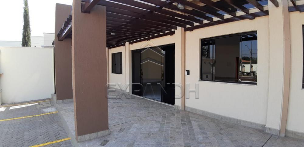 Alugar Comerciais / Sala em Sertãozinho apenas R$ 2.500,00 - Foto 13