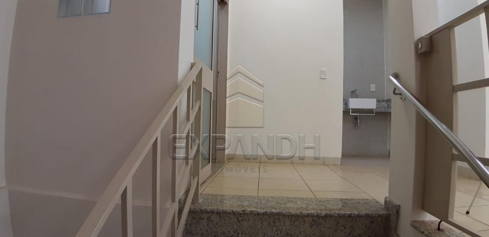 Alugar Comerciais / Salão em Sertãozinho R$ 1.850,00 - Foto 5