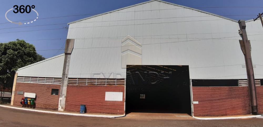 Alugar Comerciais / Barracão em Sertãozinho apenas R$ 31.216,08 - Foto 1