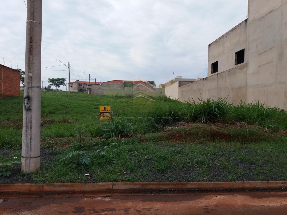 Comprar Terrenos / Padrão em Sertãozinho R$ 125.000,00 - Foto 2