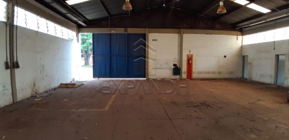 Alugar Comerciais / Barracão em Sertãozinho apenas R$ 4.935,00 - Foto 4