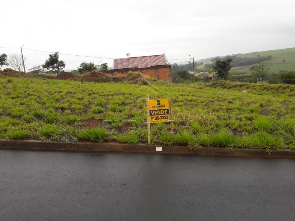 Comprar Terrenos / Padrão em Sertãozinho apenas R$ 86.503,88 - Foto 2