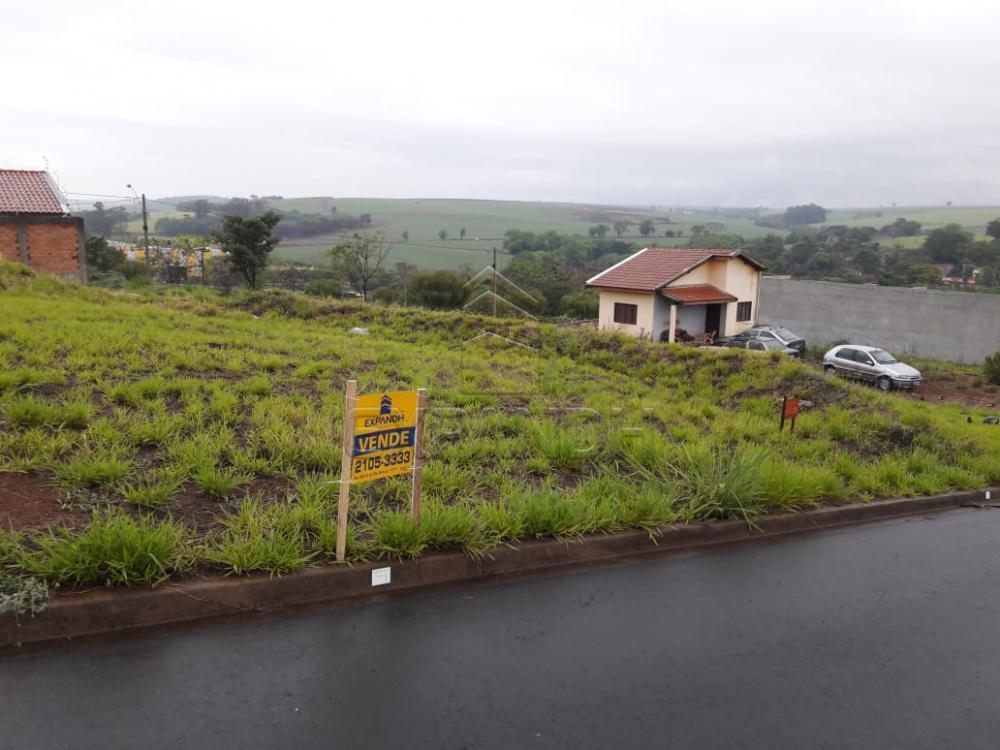Comprar Terrenos / Padrão em Sertãozinho apenas R$ 86.503,88 - Foto 3