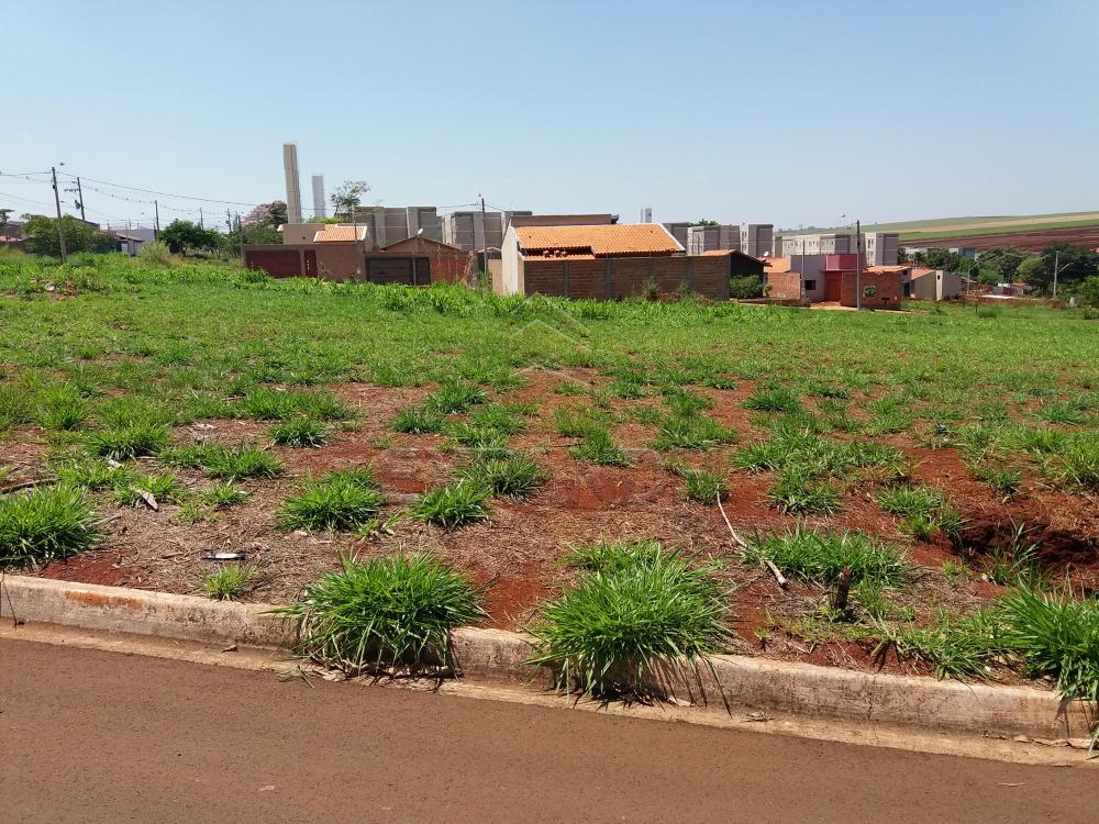 Comprar Terrenos / Padrão em Sertãozinho R$ 146.000,00 - Foto 1