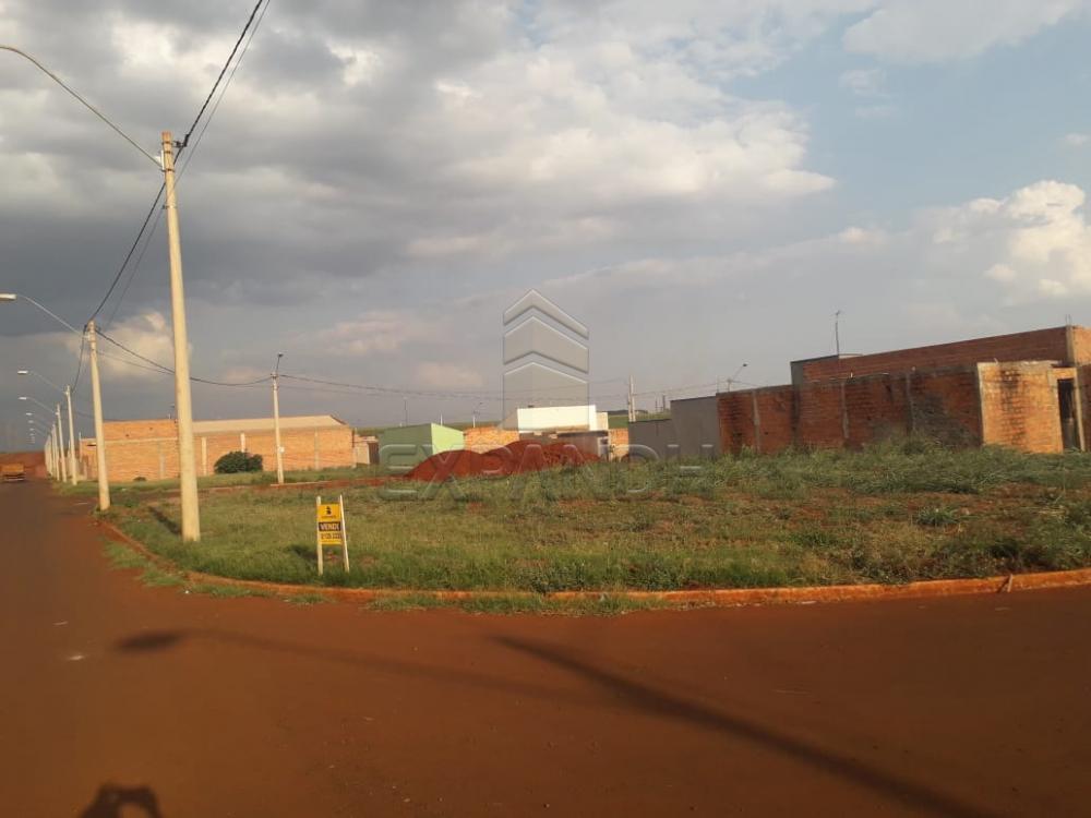 Comprar Terrenos / Padrão em Sertãozinho apenas R$ 95.000,00 - Foto 6