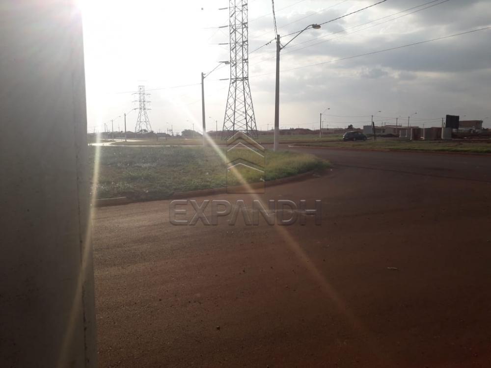 Comprar Terrenos / Padrão em Sertãozinho apenas R$ 95.000,00 - Foto 8