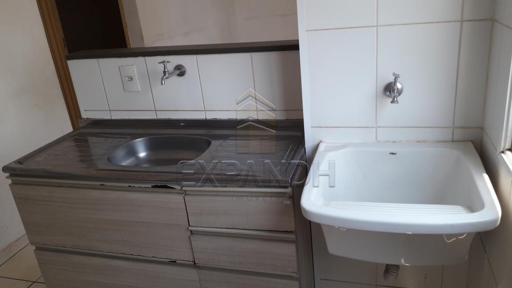 Alugar Apartamentos / Padrão em Sertãozinho R$ 750,00 - Foto 13