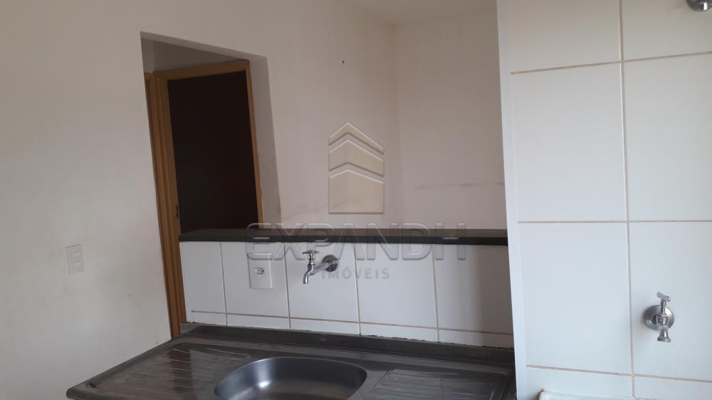 Alugar Apartamentos / Padrão em Sertãozinho R$ 750,00 - Foto 14