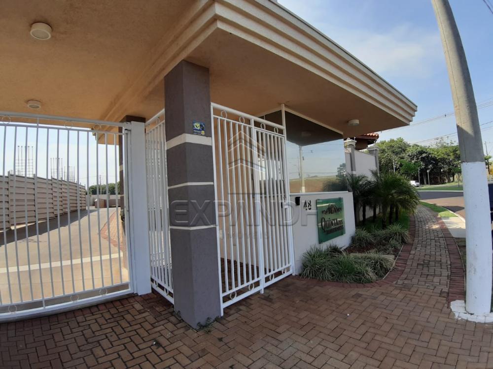 Alugar Apartamentos / Padrão em Sertãozinho apenas R$ 1.350,00 - Foto 3