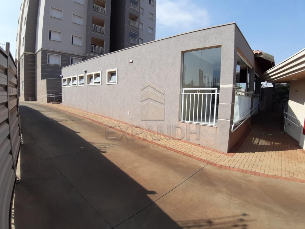 Alugar Apartamentos / Padrão em Sertãozinho apenas R$ 1.350,00 - Foto 4
