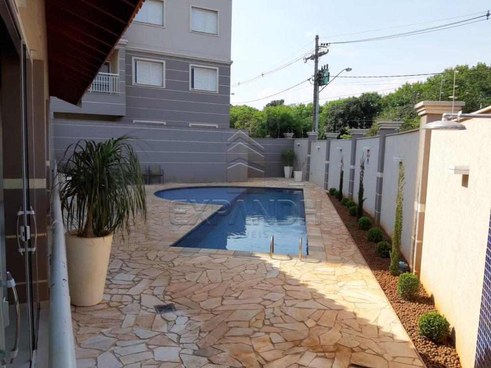Alugar Apartamentos / Padrão em Sertãozinho apenas R$ 1.350,00 - Foto 6