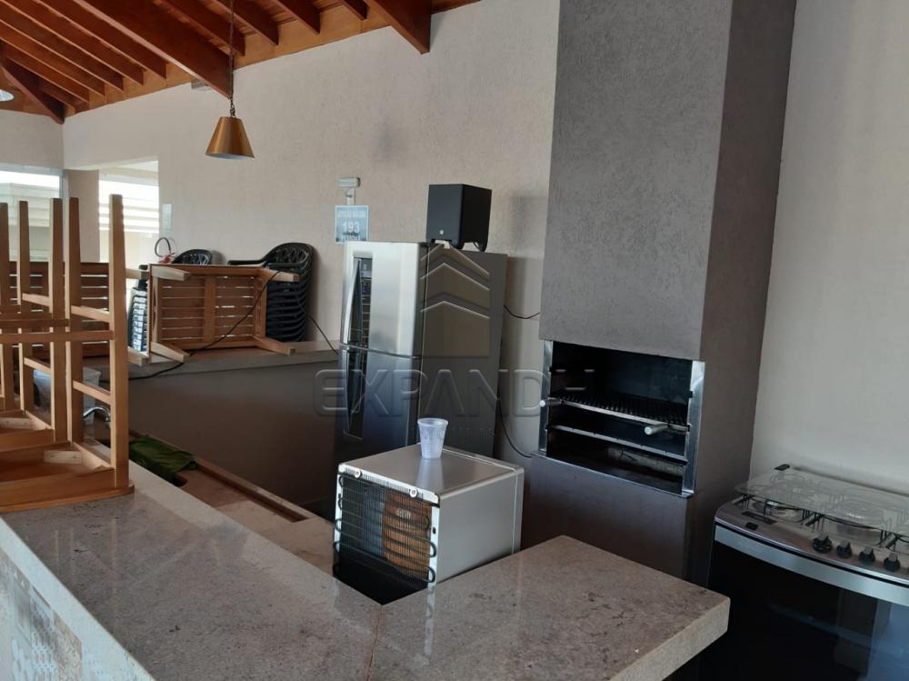 Alugar Apartamentos / Padrão em Sertãozinho apenas R$ 1.350,00 - Foto 9