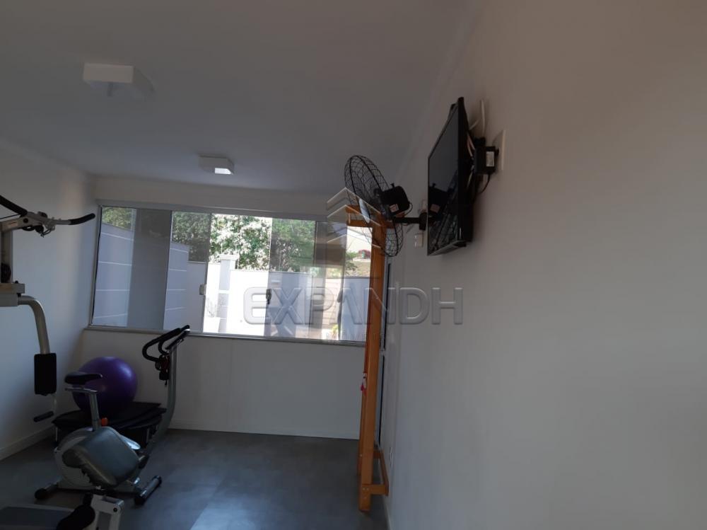 Alugar Apartamentos / Padrão em Sertãozinho apenas R$ 1.350,00 - Foto 12