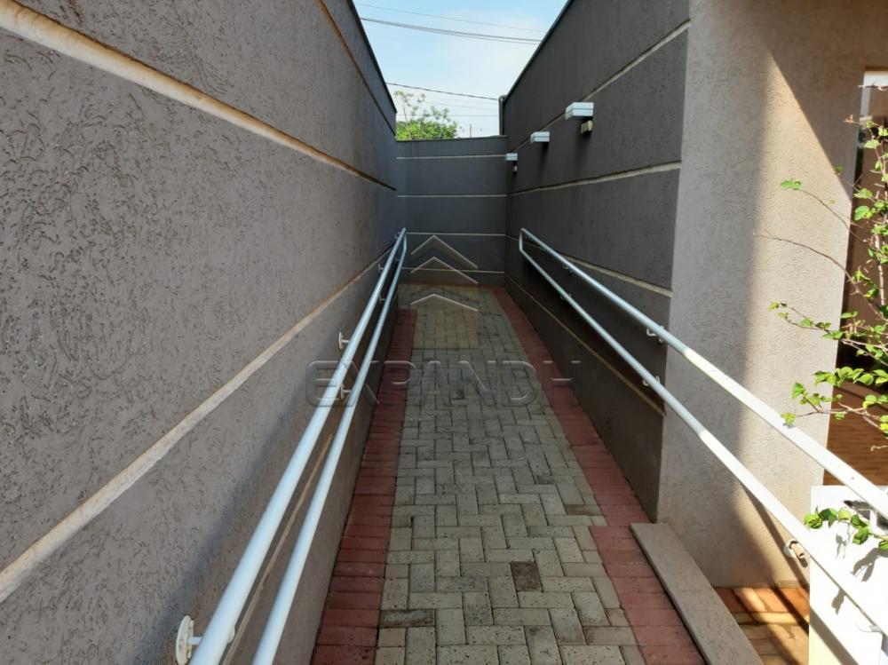 Alugar Apartamentos / Padrão em Sertãozinho apenas R$ 1.350,00 - Foto 13