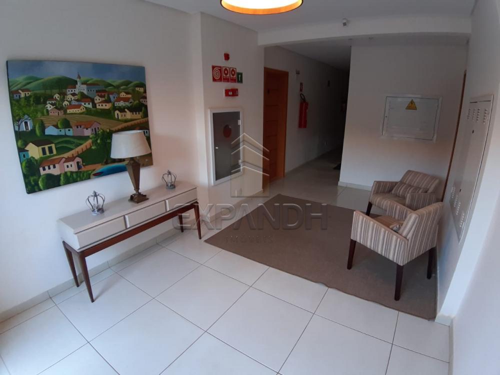 Alugar Apartamentos / Padrão em Sertãozinho apenas R$ 1.350,00 - Foto 15
