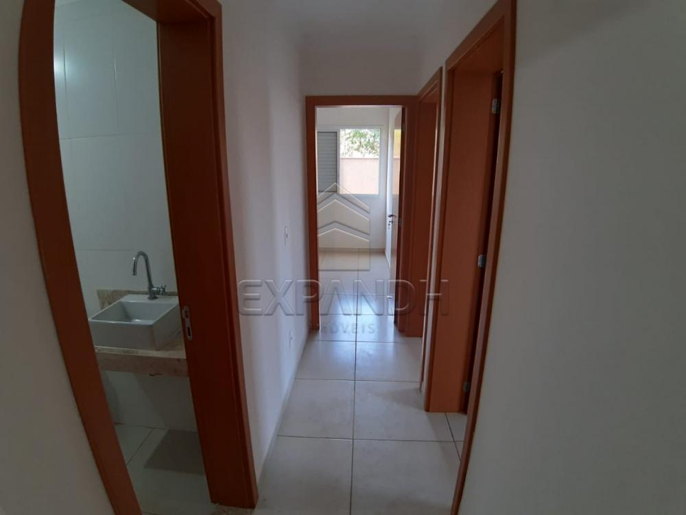 Alugar Apartamentos / Padrão em Sertãozinho apenas R$ 1.350,00 - Foto 33