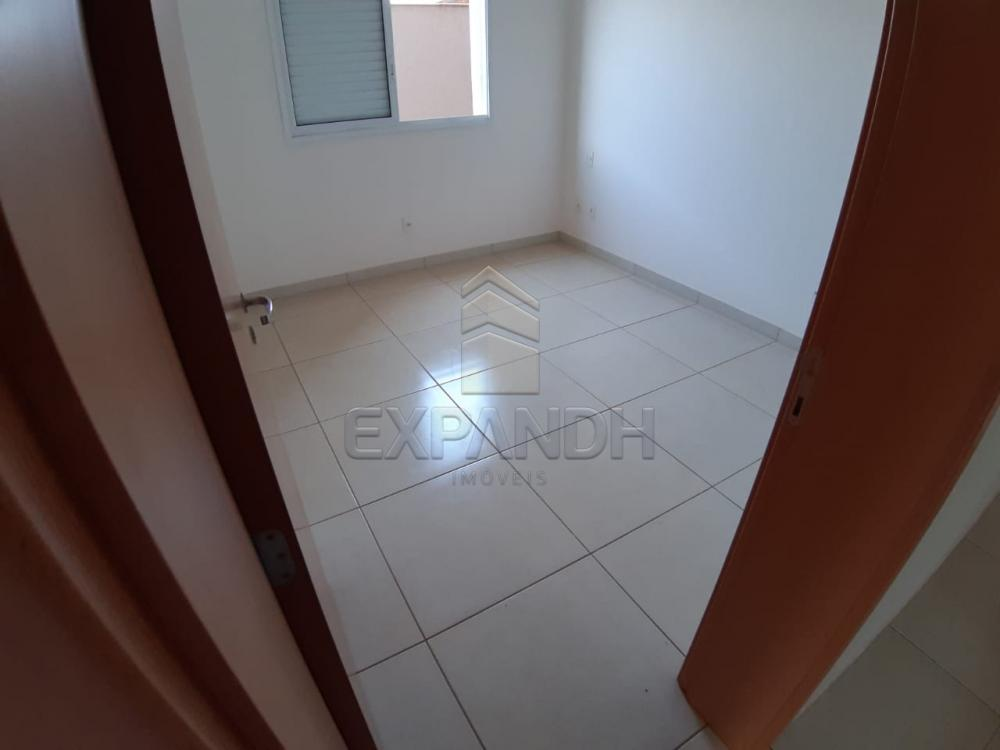 Alugar Apartamentos / Padrão em Sertãozinho apenas R$ 1.350,00 - Foto 36