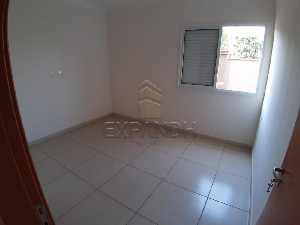 Alugar Apartamentos / Padrão em Sertãozinho apenas R$ 1.350,00 - Foto 42