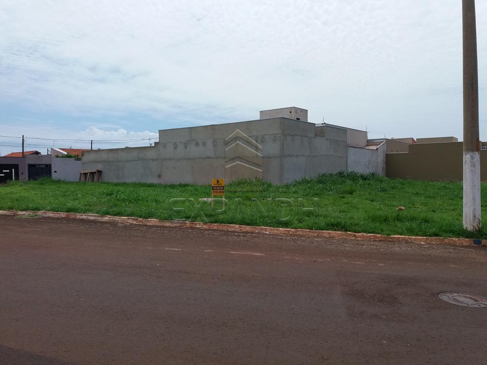 Comprar Terrenos / Padrão em Sertãozinho R$ 150.000,00 - Foto 1