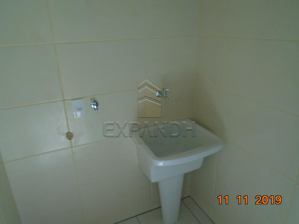 Alugar Comerciais / Salão em Sertãozinho apenas R$ 2.500,00 - Foto 5