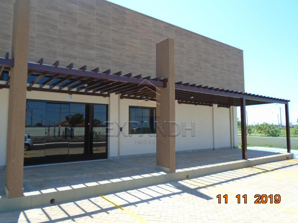 Alugar Comerciais / Salão em Sertãozinho apenas R$ 2.500,00 - Foto 3