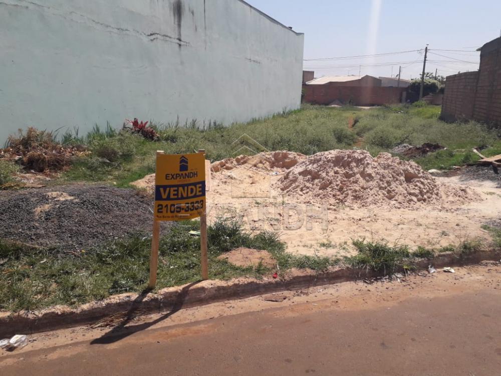 Comprar Terrenos / Padrão em Sertãozinho apenas R$ 98.000,00 - Foto 1