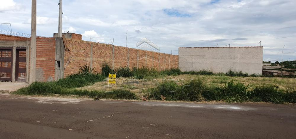 Comprar Terrenos / Padrão em Sertãozinho R$ 131.000,00 - Foto 1