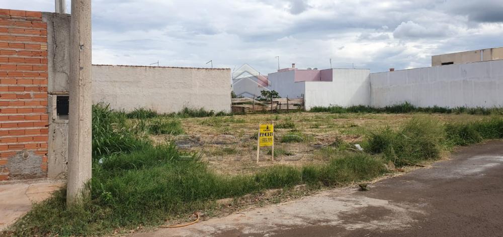 Comprar Terrenos / Padrão em Sertãozinho R$ 131.000,00 - Foto 2