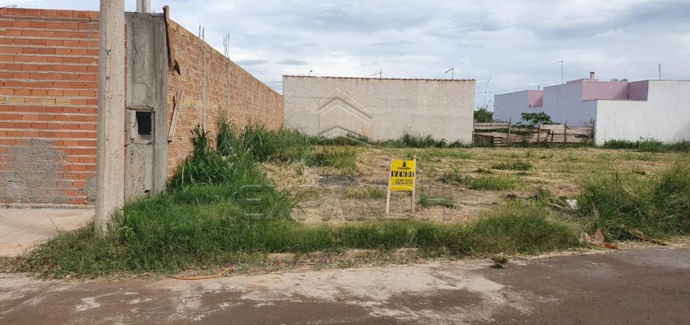 Comprar Terrenos / Padrão em Sertãozinho R$ 131.000,00 - Foto 3