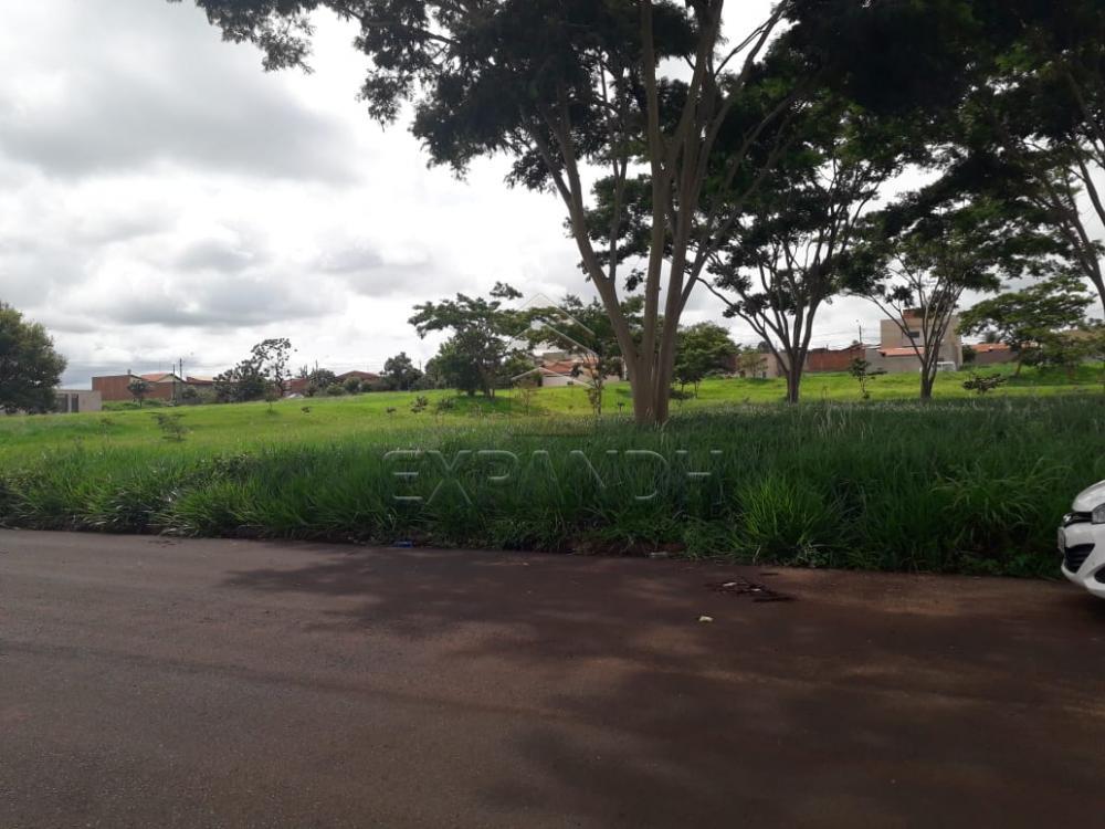 Comprar Terrenos / Padrão em Sertãozinho apenas R$ 94.000,00 - Foto 4