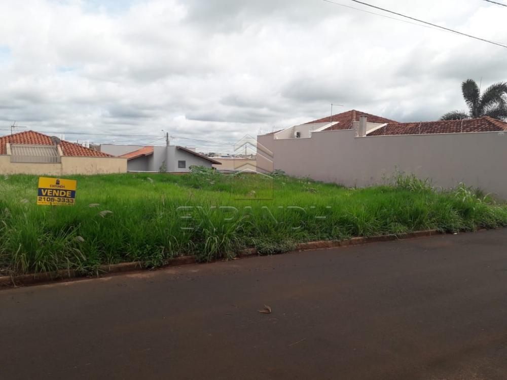 Comprar Terrenos / Padrão em Sertãozinho apenas R$ 94.000,00 - Foto 2