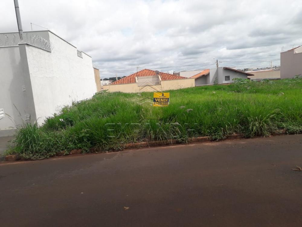 Comprar Terrenos / Padrão em Sertãozinho apenas R$ 94.000,00 - Foto 1