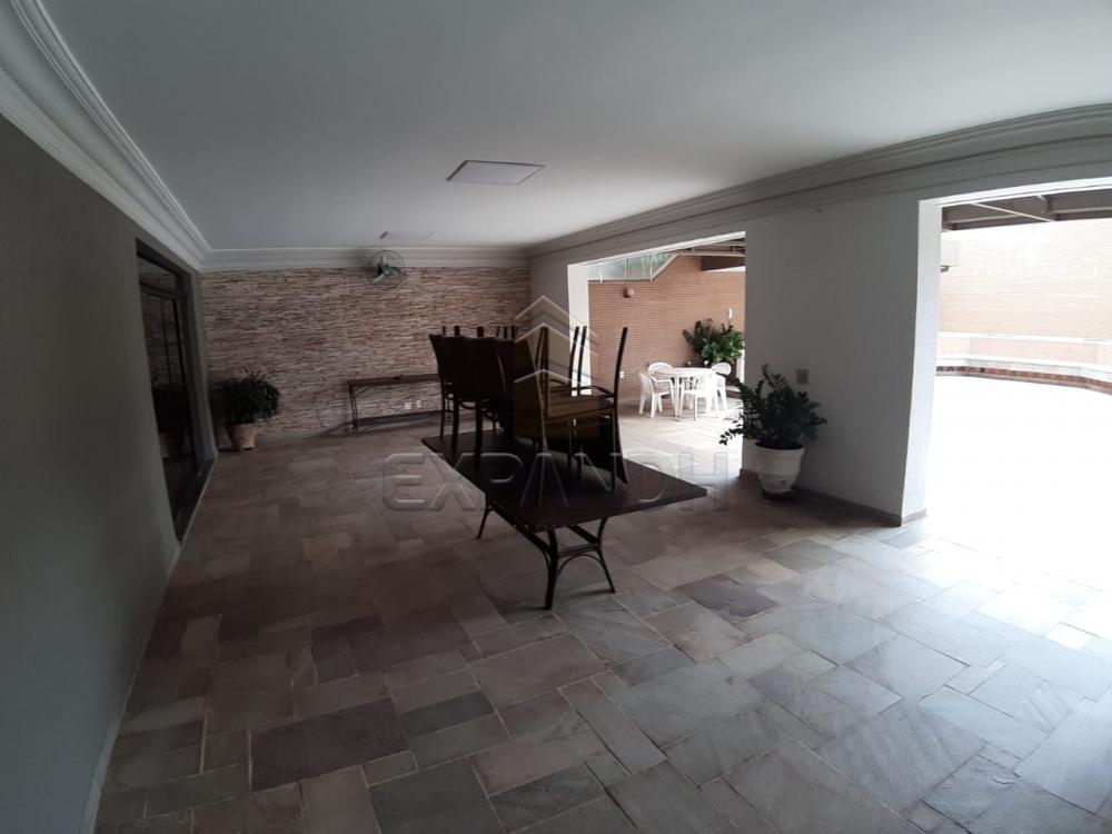Alugar Apartamentos / Padrão em Sertãozinho apenas R$ 1.000,00 - Foto 7