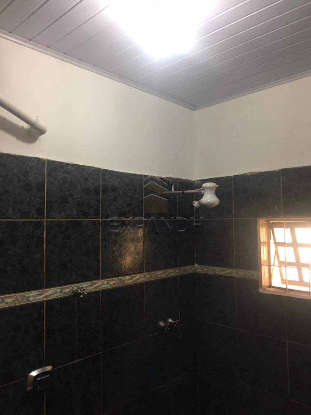 Alugar Casas / Padrão em Sertãozinho R$ 700,00 - Foto 18