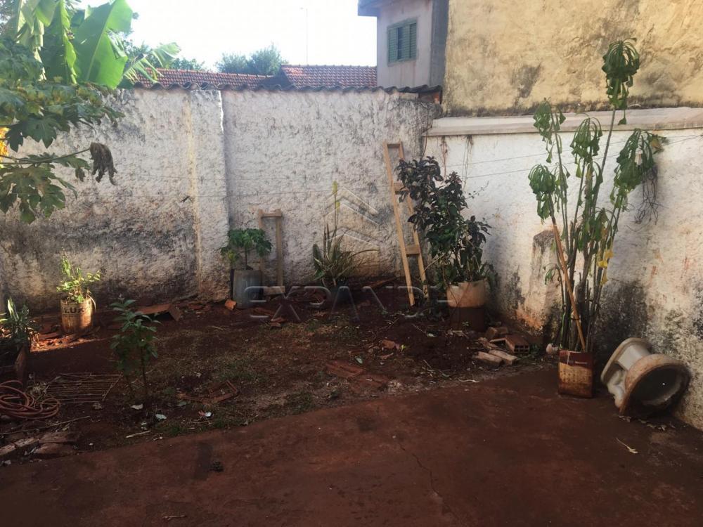 Alugar Casas / Padrão em Sertãozinho R$ 700,00 - Foto 26